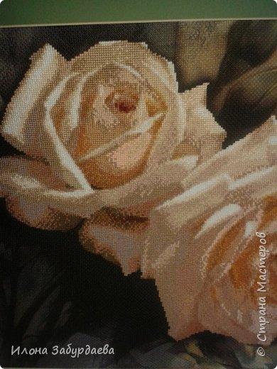 Частичная вышивка крестом , вышиты только розы.  фото 3