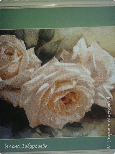 Частичная вышивка крестом , вышиты только розы.  фото 4