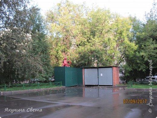 Вот такой красавец теперь охраняет школьный двор.(Высота в районе головы - 1,5 метра) фото 11