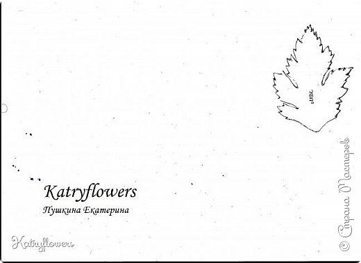 """Здравствуйте жители Страны Мастеров! Сегодня я хочу представить вам мой новый мастер-класс по цветку-украшению сорта """"Цахейла"""". Это цветок нового сорта, выведенного мной.  Что такое Цахейла? Если исходить из значения – это связь, связь всего живого, всего, что дышит и растет..  И цветок символизирует эту связь – смесь нескольких цветов во едино, но и с моими нотками волшебства…    фото 4"""