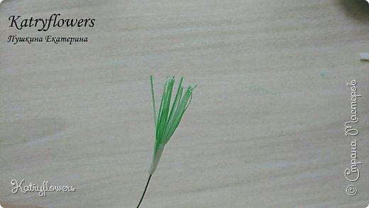 """Здравствуйте жители Страны Мастеров! Сегодня я хочу представить вам мой новый мастер-класс по цветку-украшению сорта """"Цахейла"""". Это цветок нового сорта, выведенного мной.  Что такое Цахейла? Если исходить из значения – это связь, связь всего живого, всего, что дышит и растет..  И цветок символизирует эту связь – смесь нескольких цветов во едино, но и с моими нотками волшебства…    фото 26"""