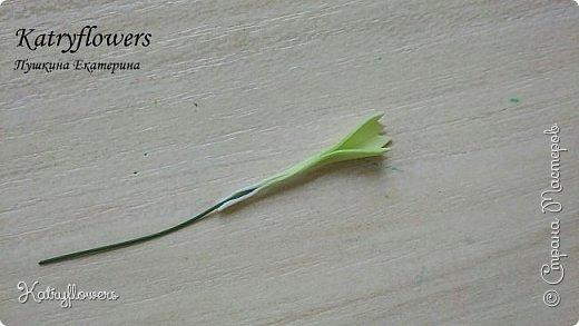 """Здравствуйте жители Страны Мастеров! Сегодня я хочу представить вам мой новый мастер-класс по цветку-украшению сорта """"Цахейла"""". Это цветок нового сорта, выведенного мной.  Что такое Цахейла? Если исходить из значения – это связь, связь всего живого, всего, что дышит и растет..  И цветок символизирует эту связь – смесь нескольких цветов во едино, но и с моими нотками волшебства…    фото 29"""