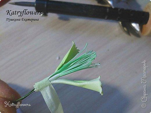 """Здравствуйте жители Страны Мастеров! Сегодня я хочу представить вам мой новый мастер-класс по цветку-украшению сорта """"Цахейла"""". Это цветок нового сорта, выведенного мной.  Что такое Цахейла? Если исходить из значения – это связь, связь всего живого, всего, что дышит и растет..  И цветок символизирует эту связь – смесь нескольких цветов во едино, но и с моими нотками волшебства…    фото 44"""