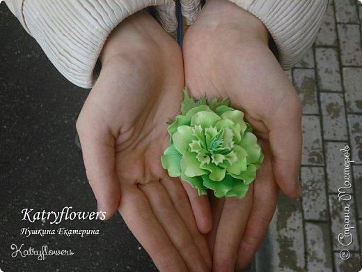 """Здравствуйте жители Страны Мастеров! Сегодня я хочу представить вам мой новый мастер-класс по цветку-украшению сорта """"Цахейла"""". Это цветок нового сорта, выведенного мной.  Что такое Цахейла? Если исходить из значения – это связь, связь всего живого, всего, что дышит и растет..  И цветок символизирует эту связь – смесь нескольких цветов во едино, но и с моими нотками волшебства…    фото 52"""
