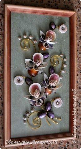 """Доброго времени суток, дорогие жители СМ! Сегодня я с очередной работой из ракушек, размер 23х41 см. Под стеклом - обои, все ракушки покрыты бесцветным лаком """"Сонет"""". фото 2"""