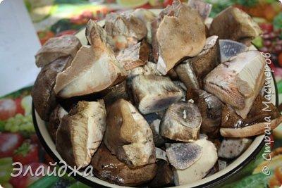 Привет всем!! В лесу много грибов! Собирать весело и интересно! Лес полон всякого добра-красивые веточки, листики, шишки, желуди... птички поют. А вот чистить и перерабатывать...тяжко! Хотя зимой отличная закуска и к празднику ароматные заготовочки всегда украсят стол. Сегодня я хочу поделиться рецептами.  Грибы я сушу,  солю, мариную и  готовлю грибную икру для вареников и пицы,  консервирую жаренными для картошечки. фото 5