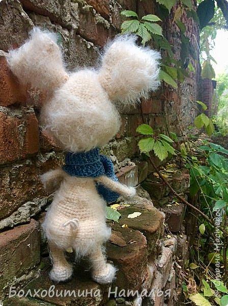Дружище Свин ( связан по МК сайта Амигуруми) фото 5