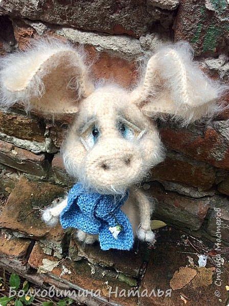 Дружище Свин ( связан по МК сайта Амигуруми) фото 2