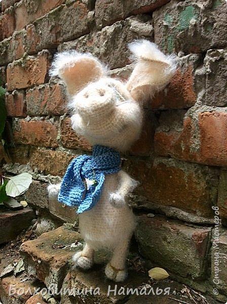 Дружище Свин ( связан по МК сайта Амигуруми) фото 3