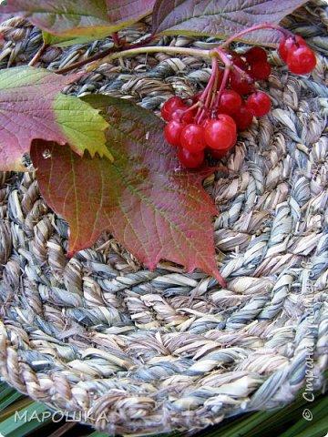 полюбила вить веревки из травы и сшивать из них посудинки разные фото 5