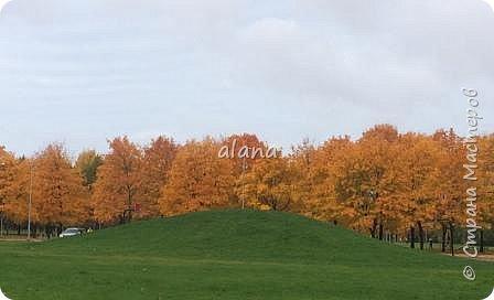 Какая красивая в этом году золотая осень!  Какое разнообразие цветовой гаммы! Столько красивых листьев, что мимо не пройти - хочется разглядеть необычность каждого. Хочу показать вам результат нашей работы с засушенными листьями фото 6