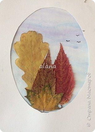 Какая красивая в этом году золотая осень!  Какое разнообразие цветовой гаммы! Столько красивых листьев, что мимо не пройти - хочется разглядеть необычность каждого. Хочу показать вам результат нашей работы с засушенными листьями фото 5