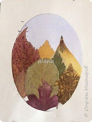 Какая красивая в этом году золотая осень!  Какое разнообразие цветовой гаммы! Столько красивых листьев, что мимо не пройти - хочется разглядеть необычность каждого. Хочу показать вам результат нашей работы с засушенными листьями фото 4