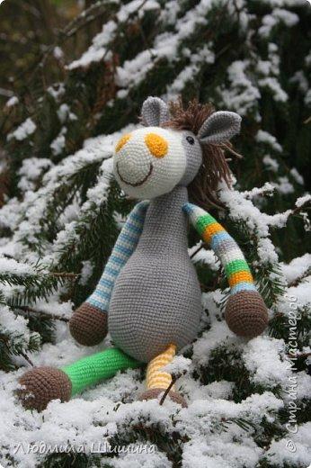 Всем добрый день! Вот мои новые игрушки. У нас выпал первый снежок и вот воспользовалась этим. фото 2