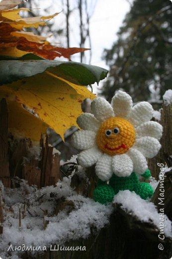 Всем добрый день! Вот мои новые игрушки. У нас выпал первый снежок и вот воспользовалась этим. фото 7