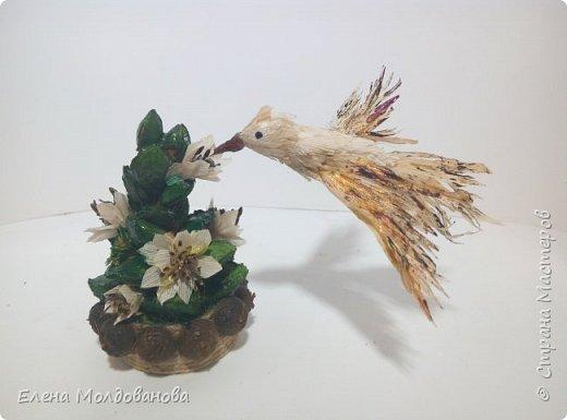 Попыталась сделать колибри. Размер птички 5 см фото 1