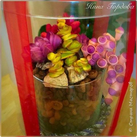 Мои любимые суккуленты , оформленные в арома- композицию. Такой вот получился подарок для моей подруги на юбилей фото 3