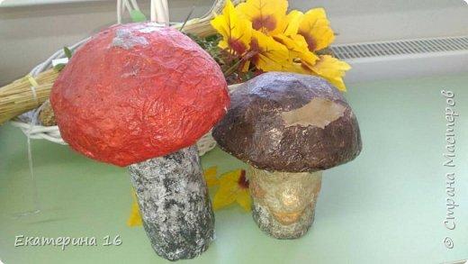 Сказочные грибы фото 1