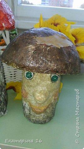 Сказочные грибы фото 3