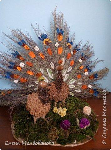 Павлины сделаны из шишек, камыша, высушенных цветов, мха и сухоцветов фото 1