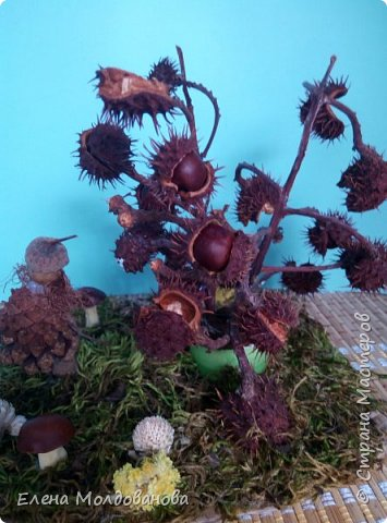 Павлины сделаны из шишек, камыша, высушенных цветов, мха и сухоцветов фото 11
