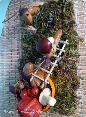 Павлины сделаны из шишек, камыша, высушенных цветов, мха и сухоцветов фото 18