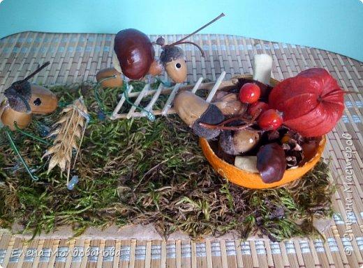 Павлины сделаны из шишек, камыша, высушенных цветов, мха и сухоцветов фото 19