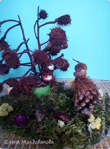 Павлины сделаны из шишек, камыша, высушенных цветов, мха и сухоцветов фото 10