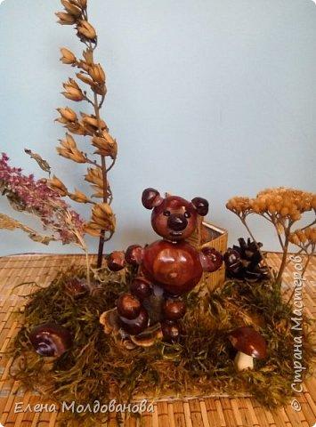 Павлины сделаны из шишек, камыша, высушенных цветов, мха и сухоцветов фото 14