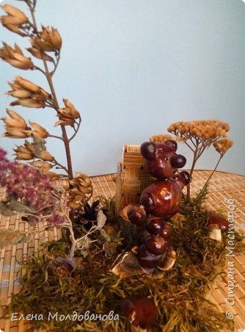 Павлины сделаны из шишек, камыша, высушенных цветов, мха и сухоцветов фото 16