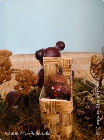 Павлины сделаны из шишек, камыша, высушенных цветов, мха и сухоцветов фото 15