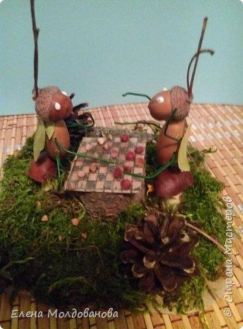 Павлины сделаны из шишек, камыша, высушенных цветов, мха и сухоцветов фото 13
