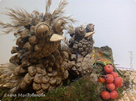Павлины сделаны из шишек, камыша, высушенных цветов, мха и сухоцветов фото 29