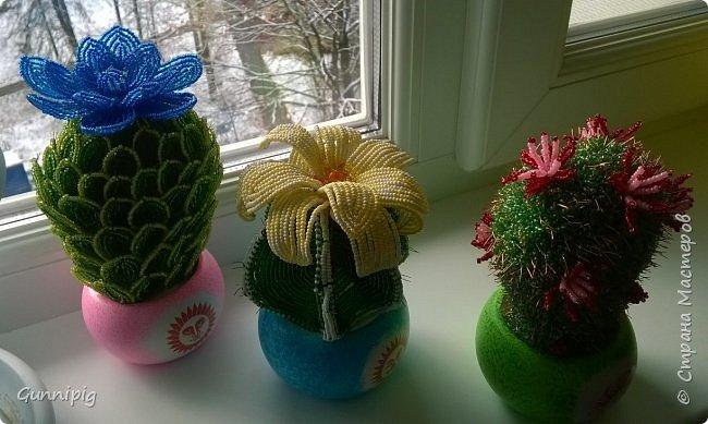 Вот такие кактусики у меня получились! Попросили в подарок, ну я и сплела... По мне, вышло очень даже симпатично) фото 12
