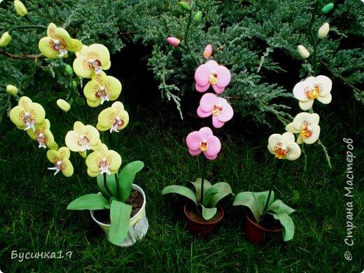 Цветы из фоамирана фото 2