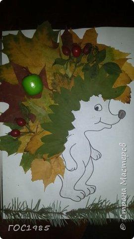Осенний Ёжка