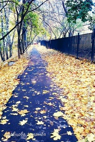 ВСЕМ сердечный привет , сегодня я вас приглашаю на прогулку в зону отдыха у дома моего , так фотоаппарат я взяла , оделись потеплей,  зарядились хорошим настроением и вперед , идем не спеша любуемся осенью - очей очарованья!  Тропинка вдоль школы к прудам фото 1