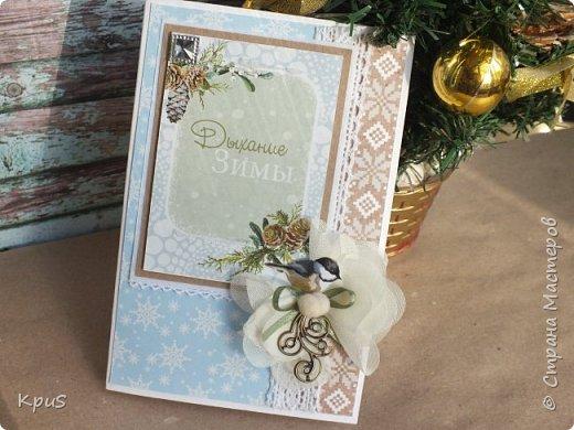 И снова здравствуйте! Подготовка к новогодним праздникам не может обойтись без изготовления открыток. Что за подарок без открытки? не привычно как-то.  Вот и я покопалась в своих запасах, нашла прошлогодние коллекции, а точнее несколько кусочков от них, и вперед.  фото 4