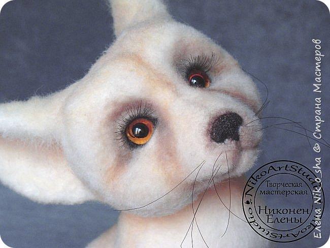Добрый день всем! Принесла вам показать свою новую валяшку.))) Лисёнок Фенек . 100 % шерсть, стеклянные глазки, реснички . 21 см на 18 см. фото 12