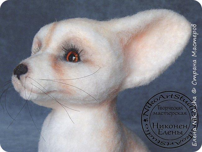Добрый день всем! Принесла вам показать свою новую валяшку.))) Лисёнок Фенек . 100 % шерсть, стеклянные глазки, реснички . 21 см на 18 см. фото 13