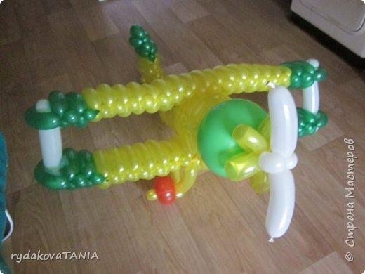Игрушки из шаров фото 5