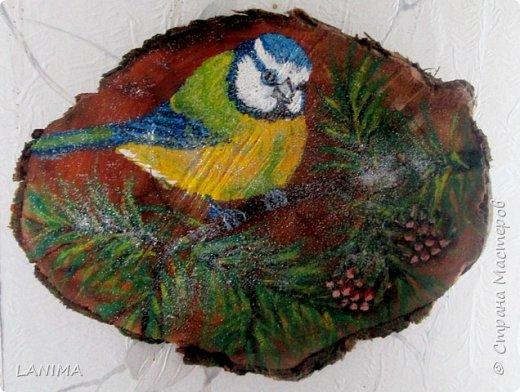 картинки на спилах дерева гуашью и крашеной крупой фото 3