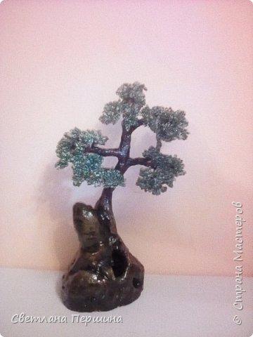Мои деревья из гипса)) фото 3