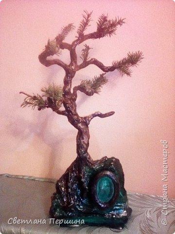 Мои деревья из гипса)) фото 4