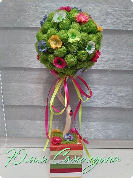 Цветочный топиарий фото 1