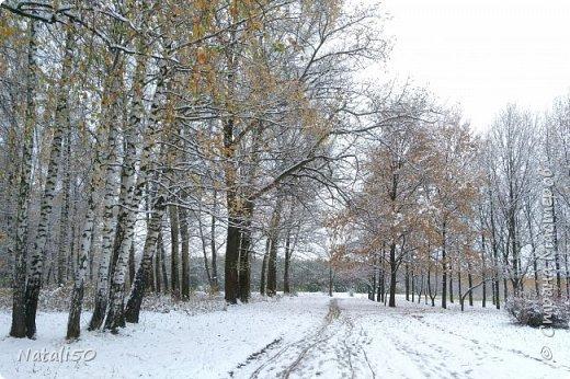 Доброго всем дня!!  Приглашаю на прогулку по первому снегу!! фото 3