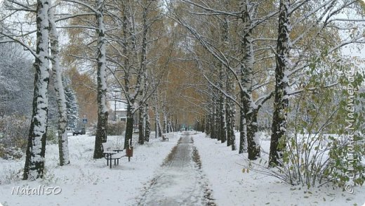 Доброго всем дня!!  Приглашаю на прогулку по первому снегу!! фото 1