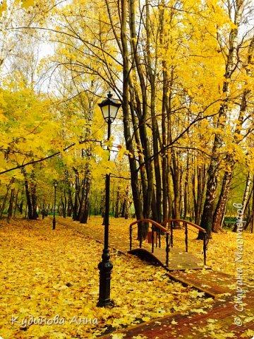 В этом году отреставрировали пруды возле нашего дома в Красногорске. И теперь там вот такая красота. В середине октября было пару солнечных ярких денечков и солнышко украсило своим сиянием все вокруг. Листики стали на солнышке волшебными, золотистыми и янтарными. Вот такой подарок!!!  фото 6