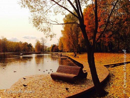 В этом году отреставрировали пруды возле нашего дома в Красногорске. И теперь там вот такая красота. В середине октября было пару солнечных ярких денечков и солнышко украсило своим сиянием все вокруг. Листики стали на солнышке волшебными, золотистыми и янтарными. Вот такой подарок!!!  фото 8
