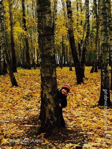 В этом году отреставрировали пруды возле нашего дома в Красногорске. И теперь там вот такая красота. В середине октября было пару солнечных ярких денечков и солнышко украсило своим сиянием все вокруг. Листики стали на солнышке волшебными, золотистыми и янтарными. Вот такой подарок!!!  фото 16
